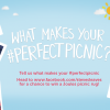 #PerfectPicnic competition 2017!
